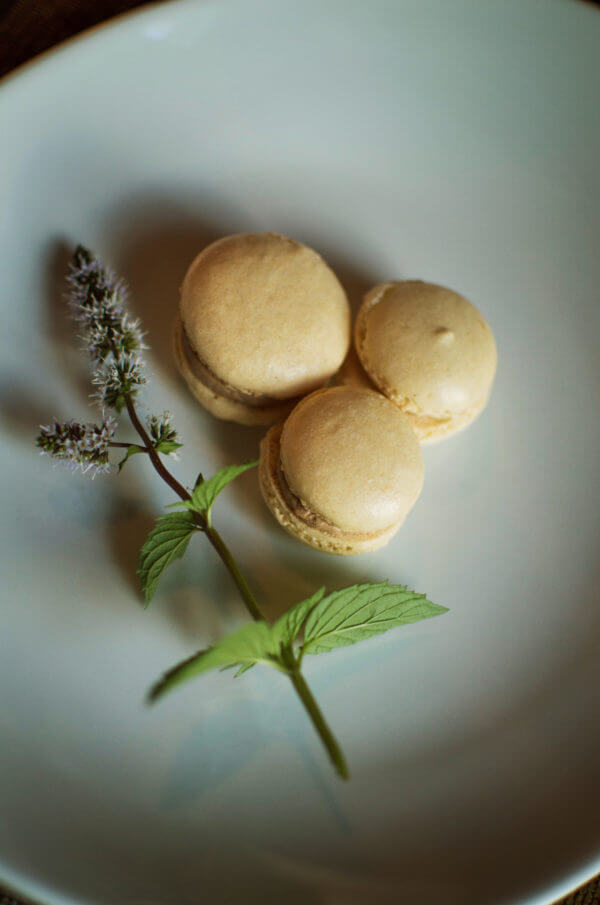 French Almond Macarons - The perfect crispy chewy combo with a buttery chocolate center that will make you go weak in the knees. They're so good, they don't last long! / lakeside table.com