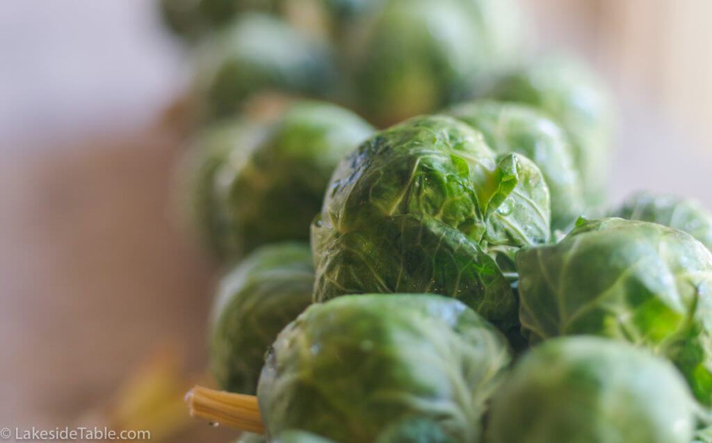 close-up-brussels-sprouts-recipe