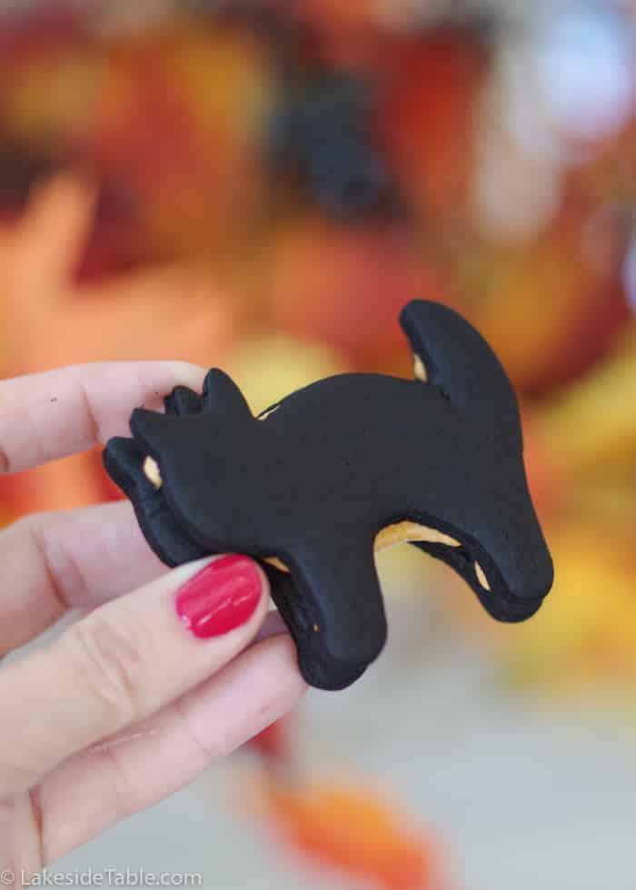 Homemade black cat oreo cookie
