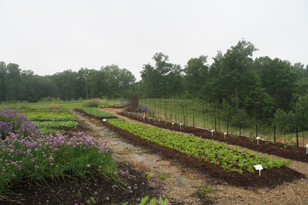 plots at the firefly farm to fork